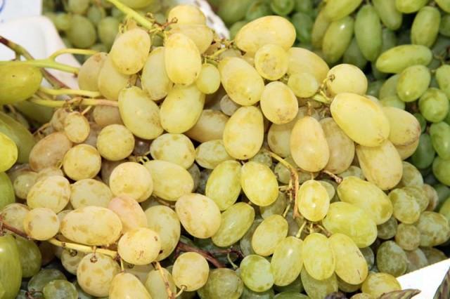 Francese bianca variet che non richiedono trattamenti - Uva da tavola bianca ...